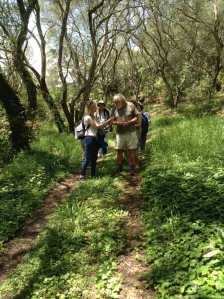 David Bellamy as always finds time to share his enthusiasm for the range of flora and fauna found in the undergrowth and woodland of Corfu.