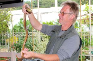 Herpetologist explains